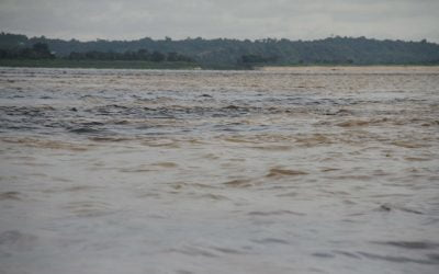 Rio Negro + Soleil Moins = Amazonas!