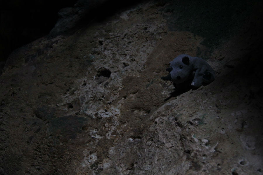 Hato-caves