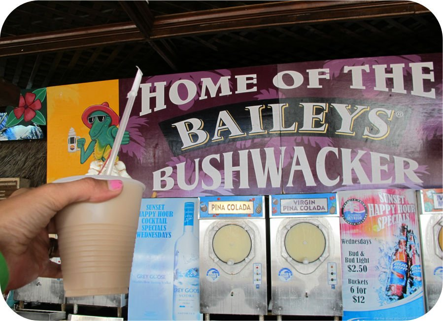Bushwacker I St: Thomas!