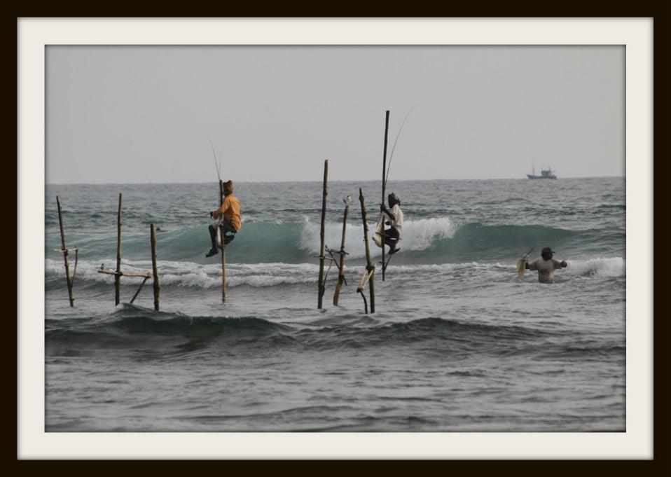 stilt-fishing-002