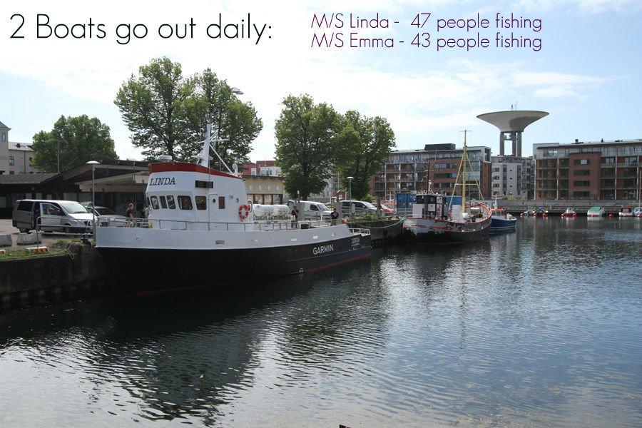 Pilka torsk med Landskrona batarna