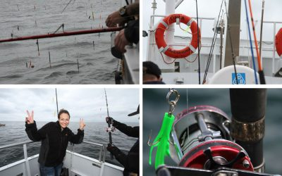 Cod fishing with Landskrona boats