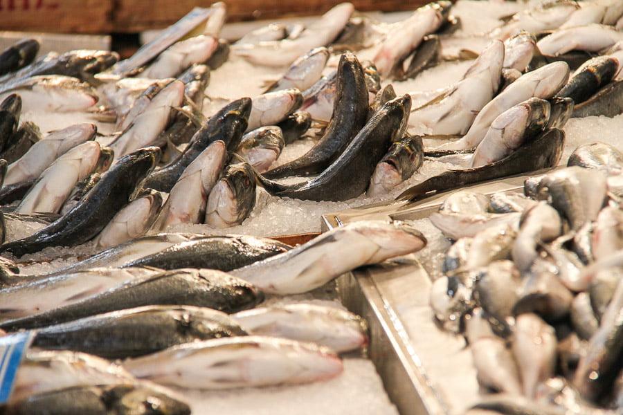 Athens fish market – Varvakios Agora!
