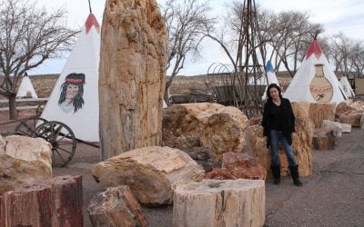 Giants along Route 66: Worlds Largest Petrified Tree