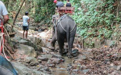 No matter what – Thailand always works!