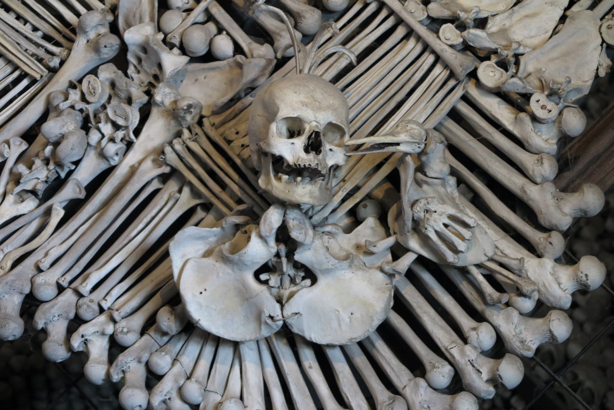Morbid tourism - death and tragedy continues to attract tourists
