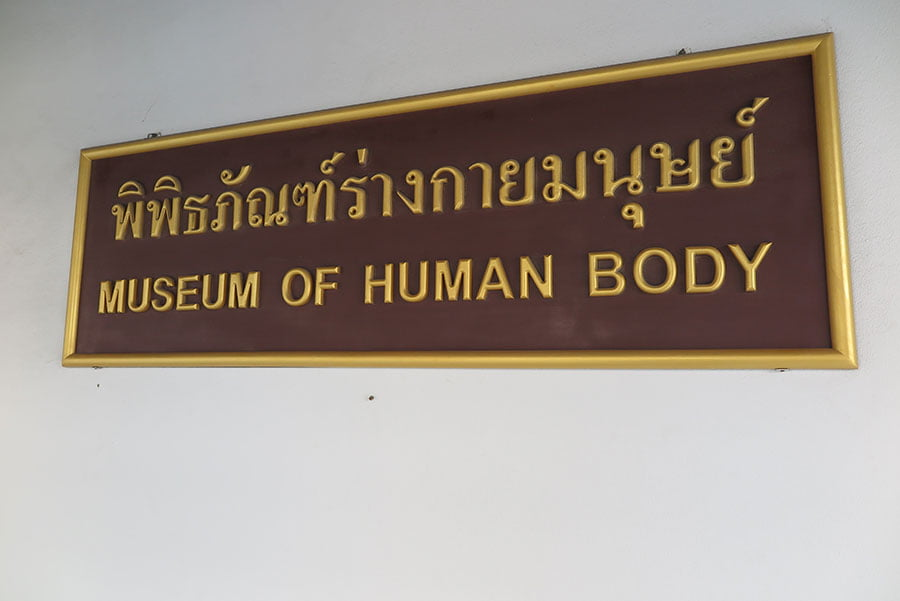 The Odd Side Of Thailand