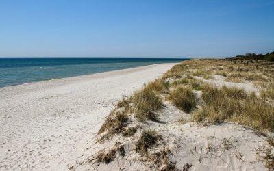 Sandhammaren, a great beach in Sweden