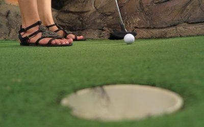 Dino Park Mini Golf, Karon