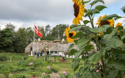 Seaweed Roofs (Tangtag) – The only place to see them is at Laeso, Denmark