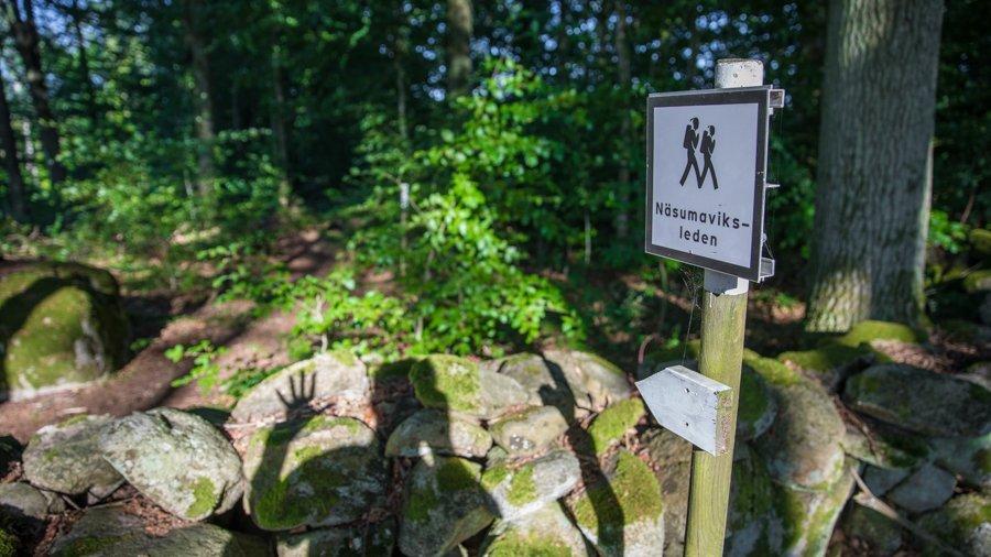 Näsumaviksleden – A five star hiking trail
