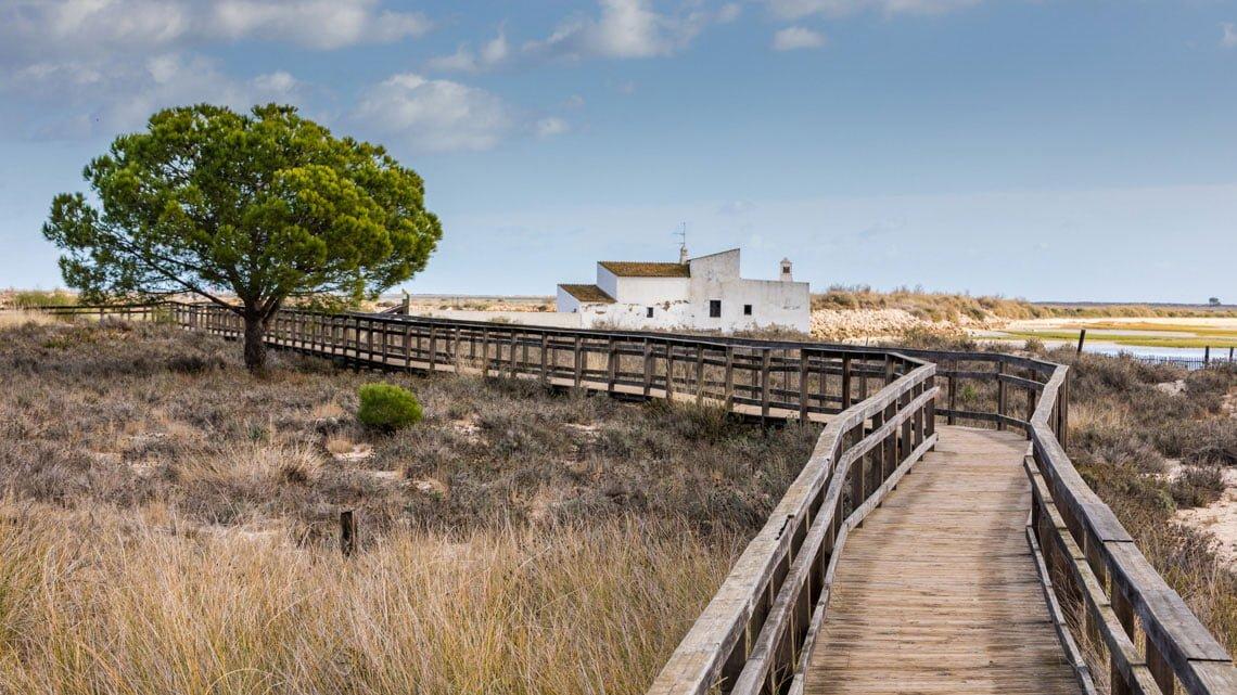 Ria Formosa in Portugal