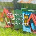 Honey farm in Poland