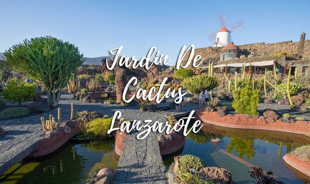 Jardin de Cactus – Things to do in Lanzarote