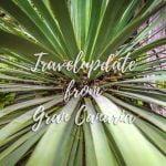 Travelupdate