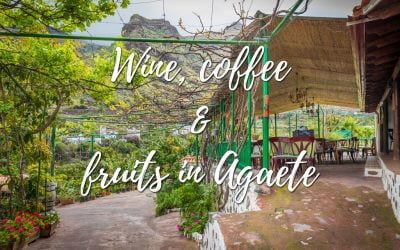 Among Wine and coffee and fruits in Agaete