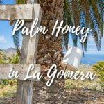 Palm honey in La Gomera