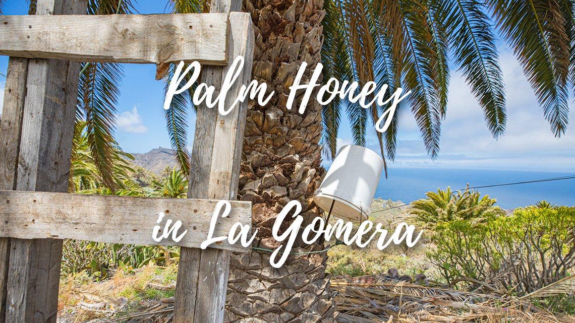 Palm honey making