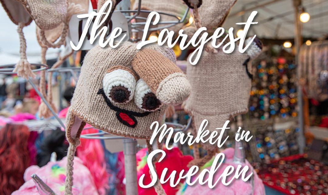Sweden's lagest market – Kiviks Marknad