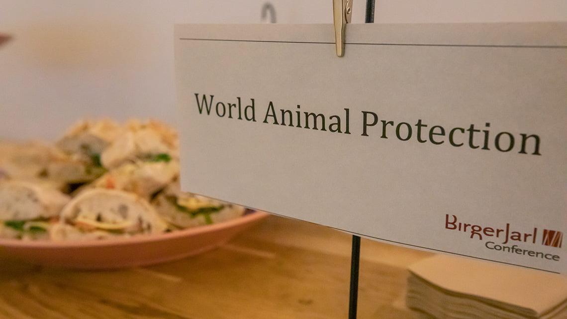 World animal protection food