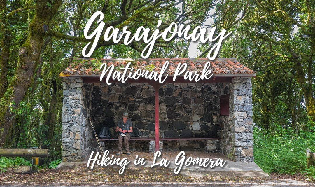 Garajonay National Park – Hiking in La Gomera