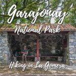 Garajonay National Park - Hiking in La Gomera