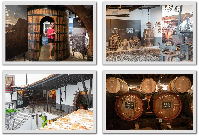 Premium Lodge Tour at the Madeira Wine Company