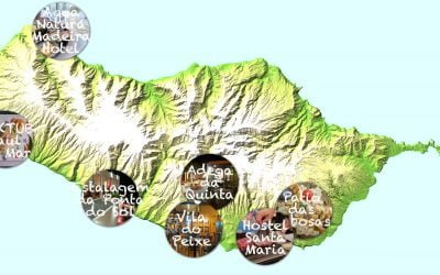 7 Restaurants in Madeira that you want to check out