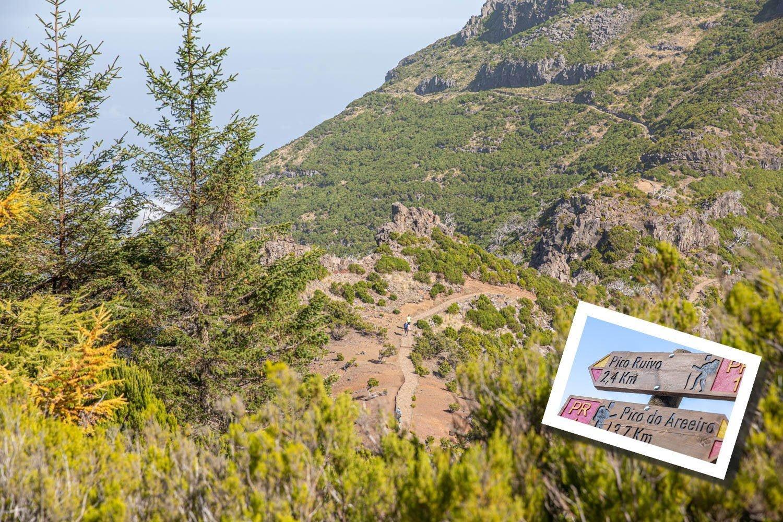 Peak to Peak walk in Madeira