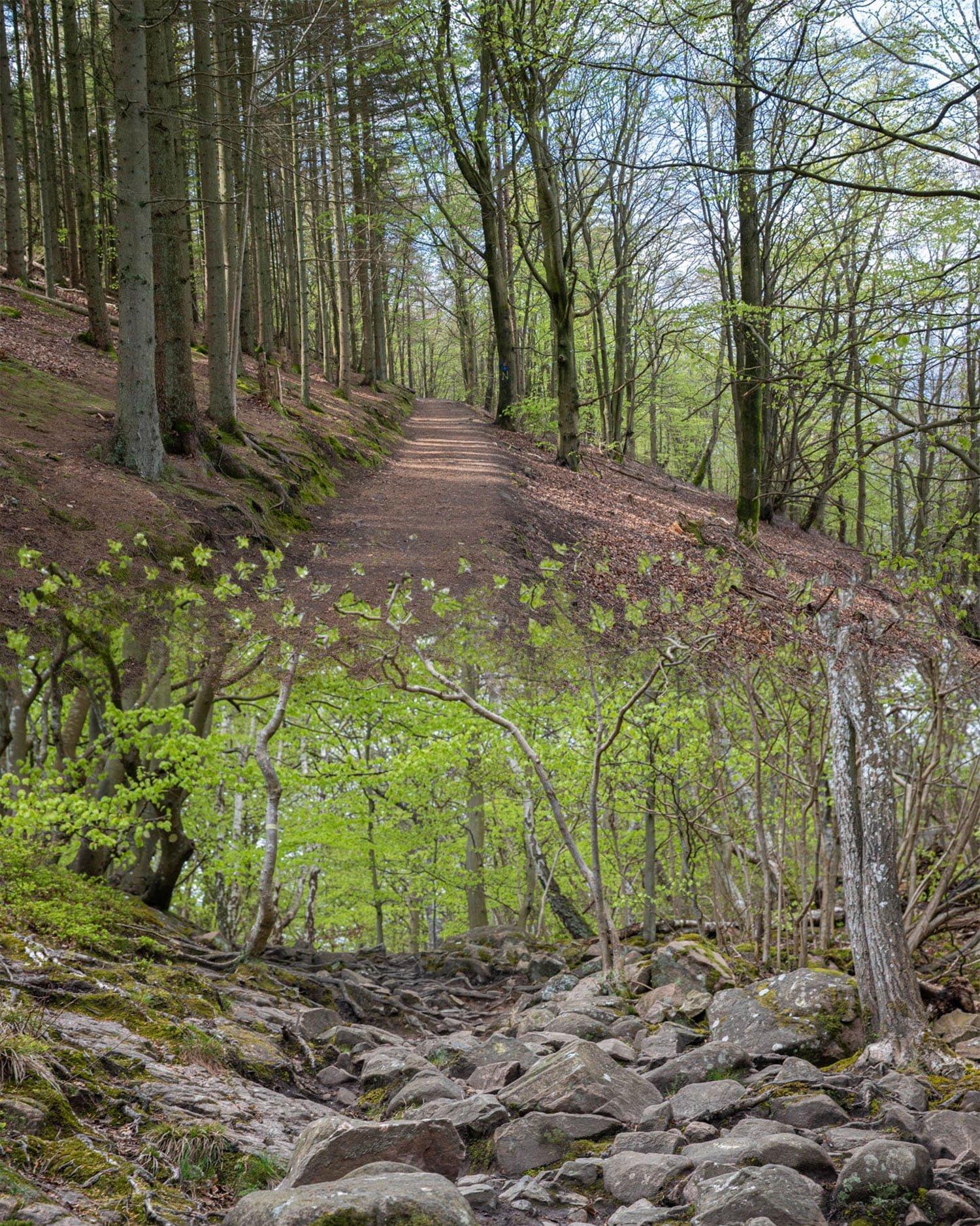 Nimis and Kullaberg Nature Reserve