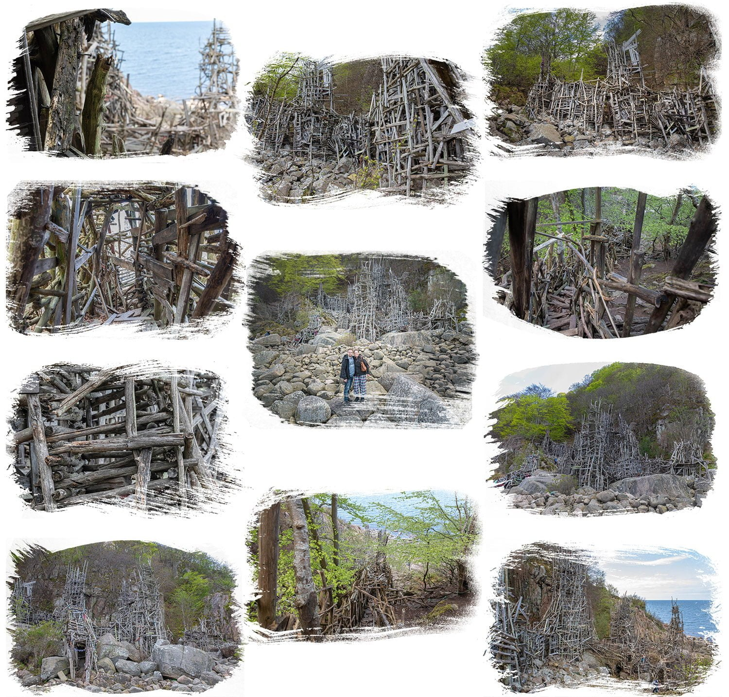 A collage of pictures from Nimis and Kullaberg Nature Reserve