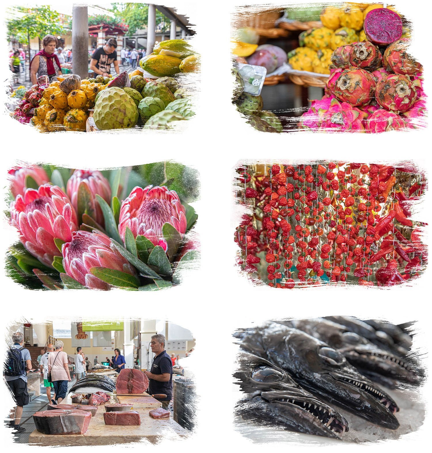 Farmers Market in old town Funchal Madeira