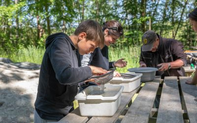 Fossil search – Odd thing in southern Sweden