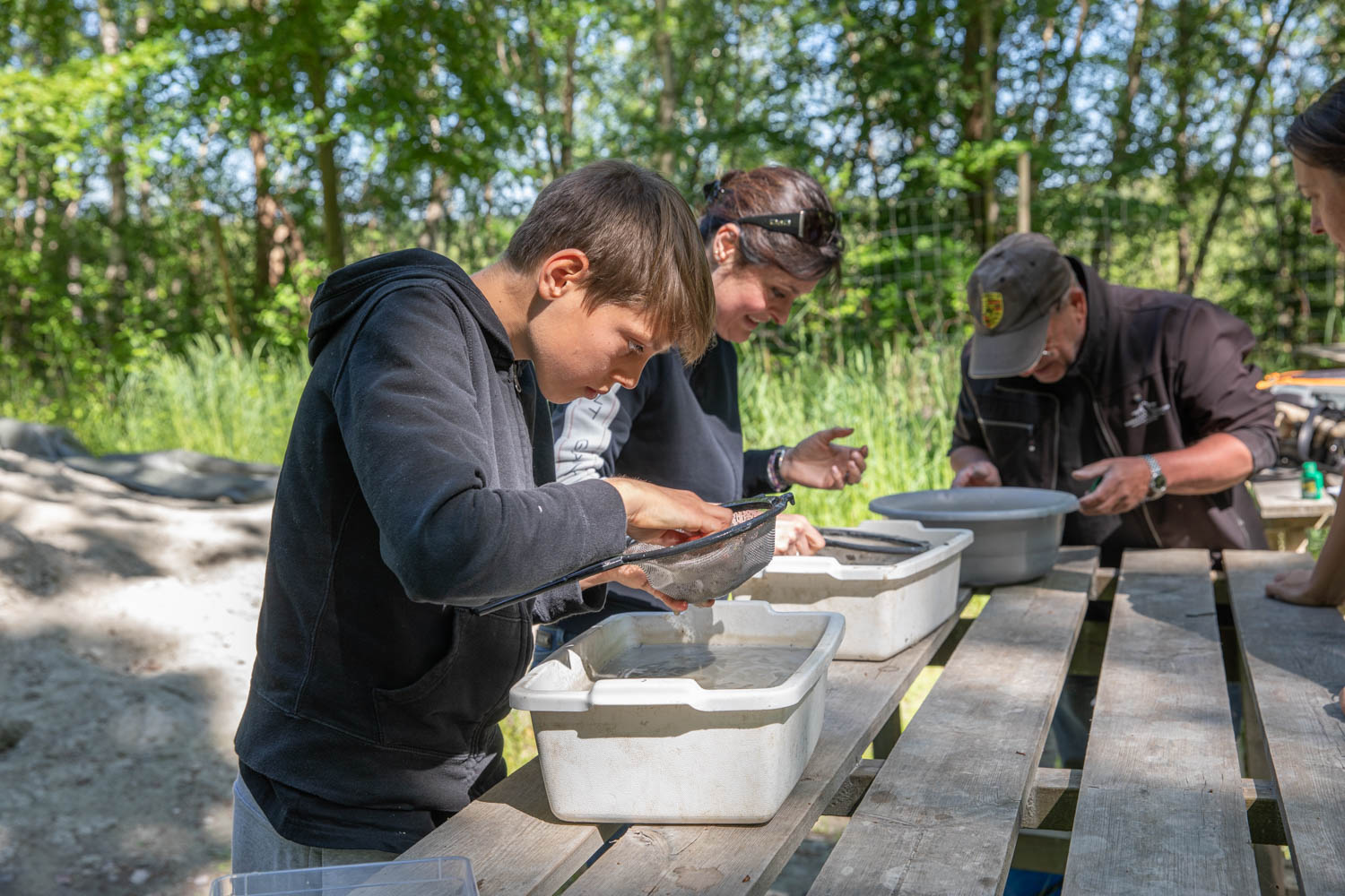 Fossil search in south Sweden, To do in Sweden
