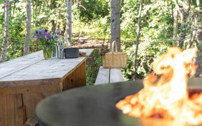 Dinner in Nature in Kloster and Husbyringen