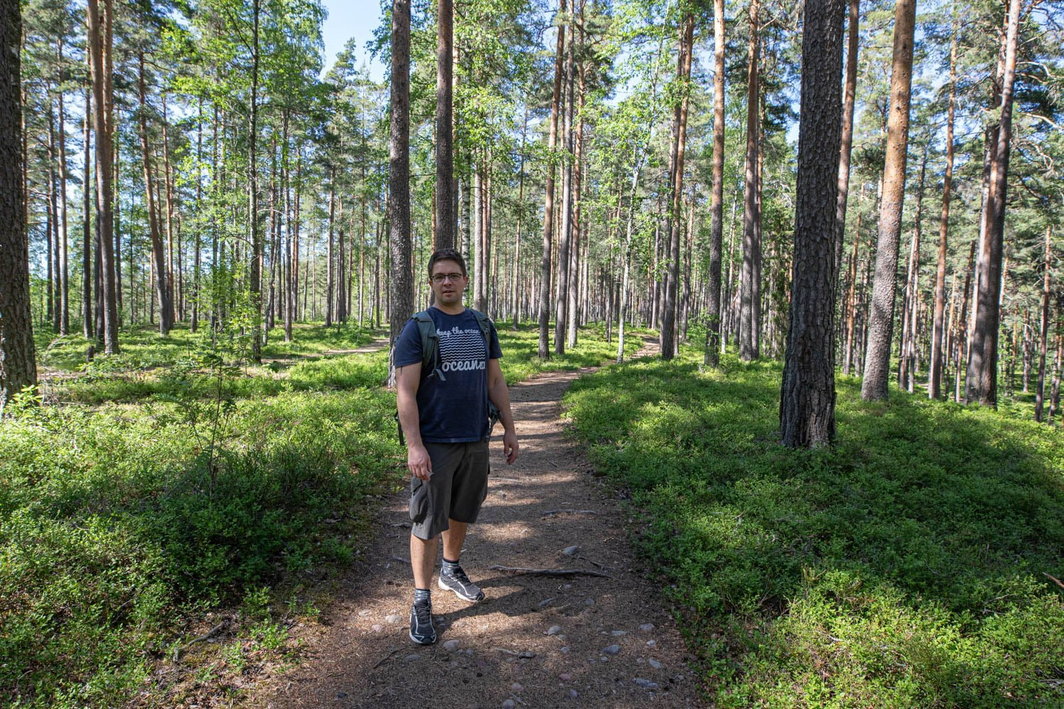 Stadsberget - A nice walk in the forest
