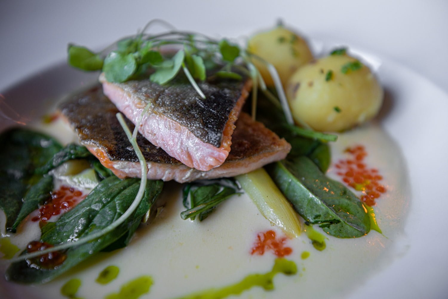 char with asparagus and spinach.