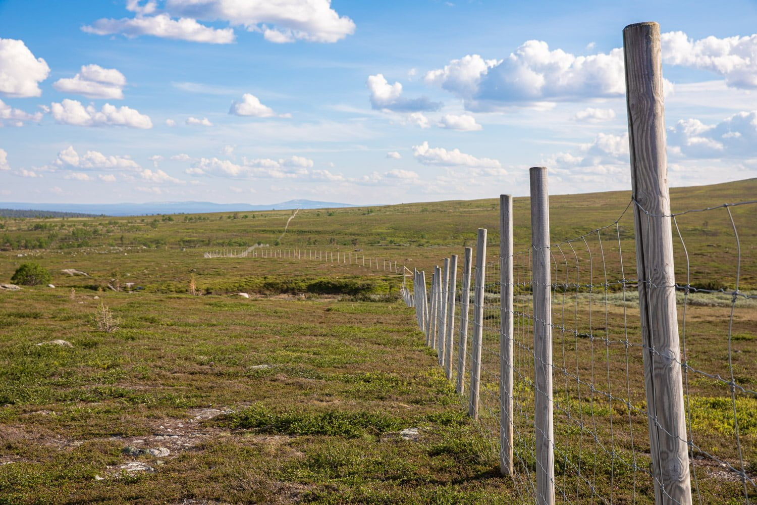 The fence is not the Norwegian border