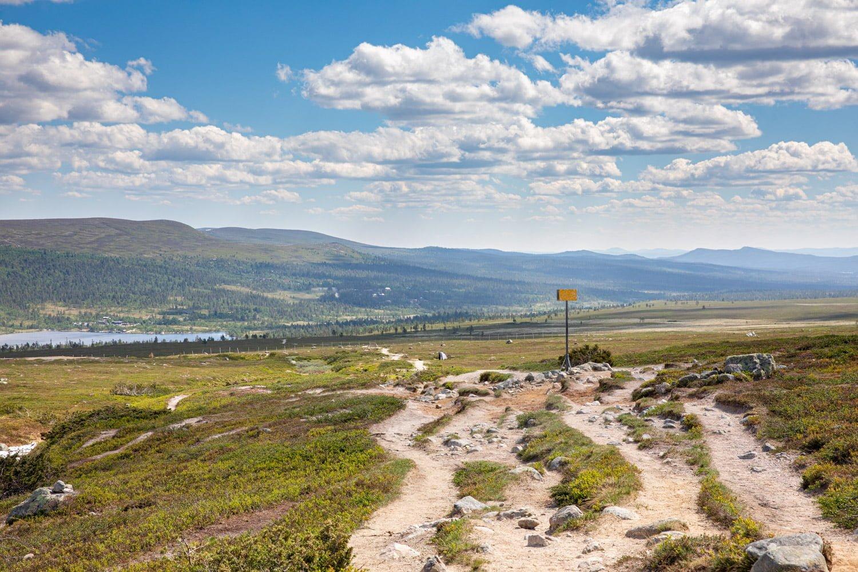Hiking in Dalarna, Sweden